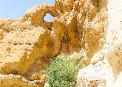 oman-highlight-wadi-shab-schwimmen (10)