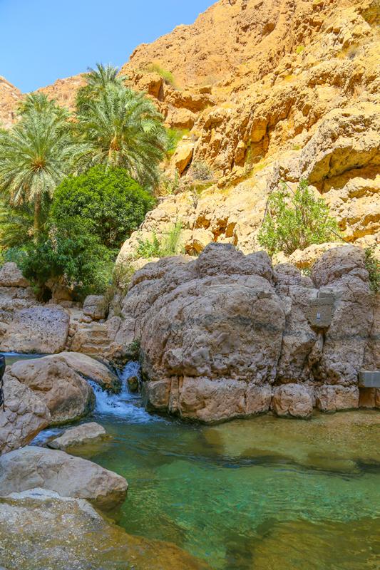 oman-highlight-wadi-shab-schwimmen (13)