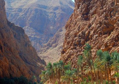 oman-highlight-wadi-shab-schwimmen (22)