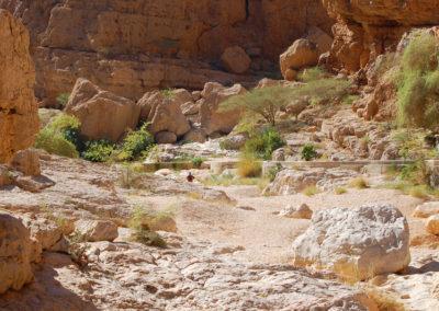 oman-highlight-wadi-shab-schwimmen (26)