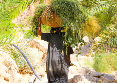 oman-highlight-wadi-shab-schwimmen (3)