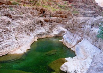 oman-highlight-wadi-shab-schwimmen (37)