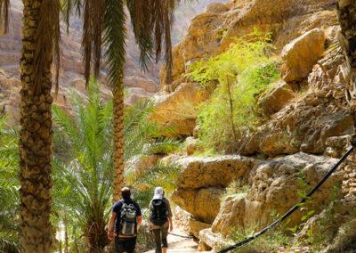 oman-highlight-wadi-shab-schwimmen (4)