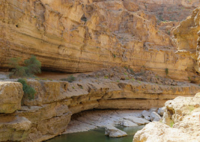 oman-highlight-wadi-shab-schwimmen (7)