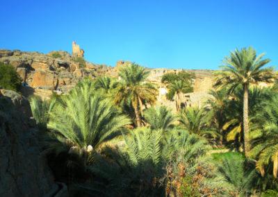 oman-misfat-al-abriyyin-reise-oase-wachturm