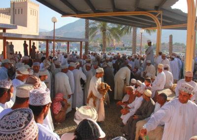 oman-nizwa-basar-viehmarkt-souq-tiere-rundreise