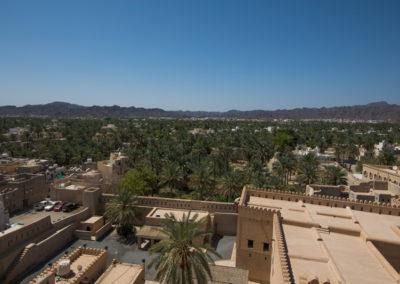 oman-nizwa-oase-wohnung-reise-palmen