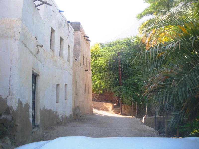oman-rundreise-offroad-wadi-tiwi (12)