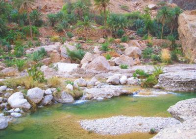 oman-rundreise-offroad-wadi-tiwi (18)