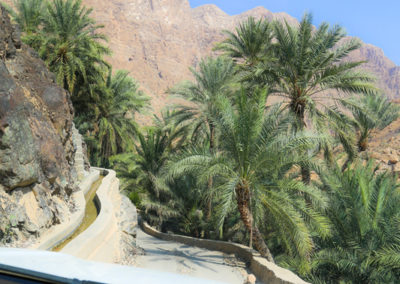 oman-rundreise-offroad-wadi-tiwi (3)