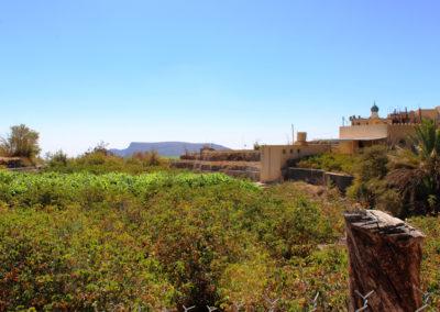 oman-sayq-plateau-tour-jabal-al-akhdar-gruener-berg