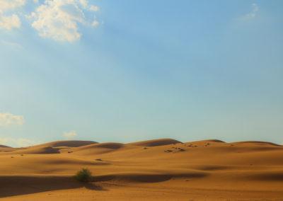 oman-sharqiyah-sands-wueste-duene-reise-erholung