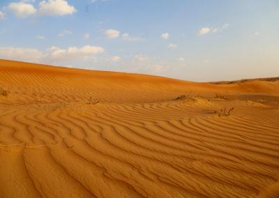 oman-sharqiyah-sands-wueste-duenen-wahiba-rundreise
