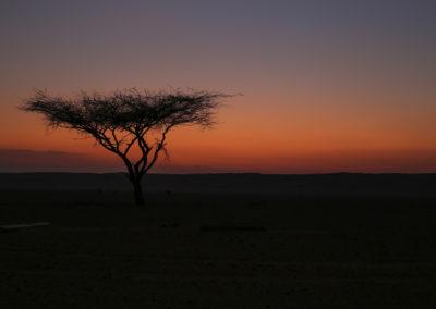 oman-sharqiyah-sands-wueste-fotografie