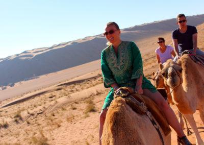 oman-sharqiyah-sands-wueste-gaeste-kamele-reiten