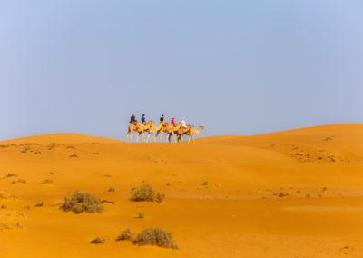 oman-sharqiyah-sands-wueste-kamele-reiten-urlaub