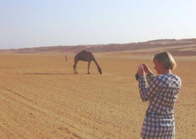 oman-sharqiyah-sands-wueste-tiere-fotos