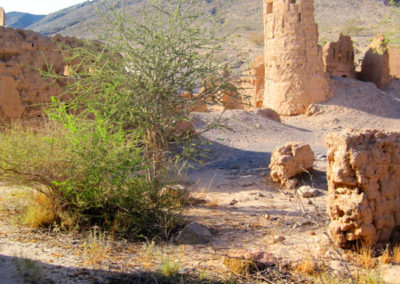 oman-tanuf-ruinen-tour (16)