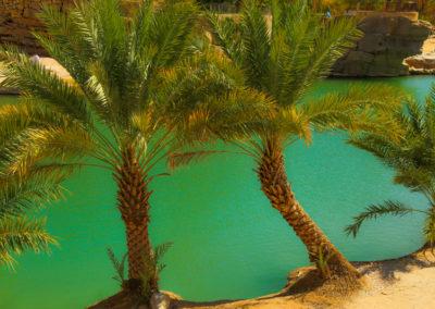 oman-urlaub-baden-wadi-bani-khalid (3)