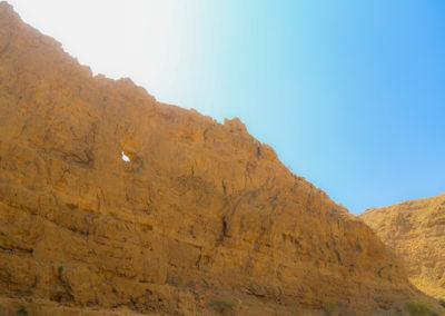 oman-wadi-arbeen-reise (5)
