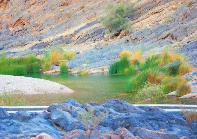 oman-wadi-arbeen-reise (8)