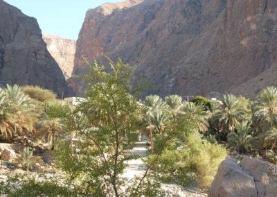 oman-wadi-suwayh-baden-reise (21)